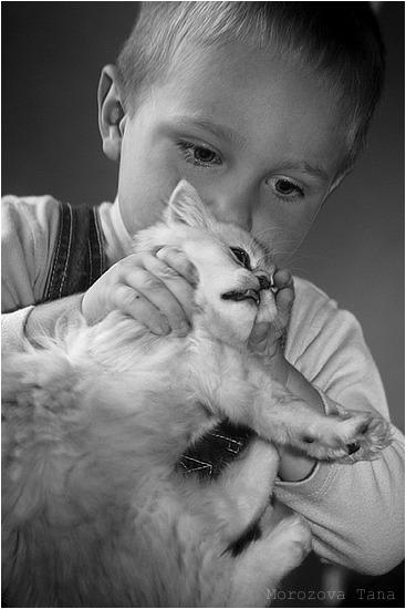 Картинки с животными замученный