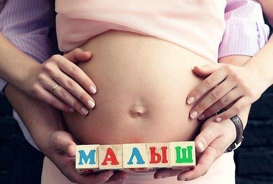 Корм для беременных сук 98