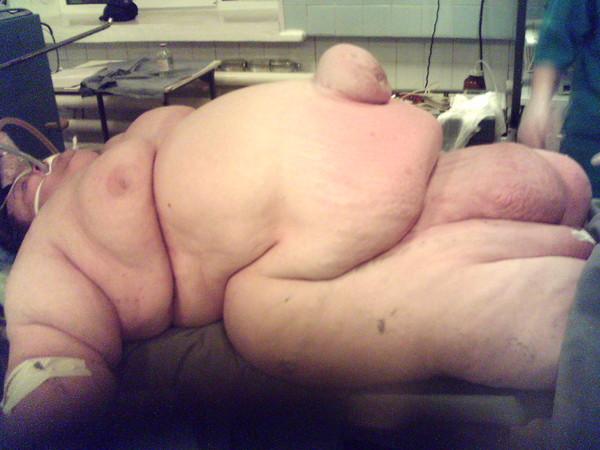 электронный я жирная корова фото буквы можно разместить