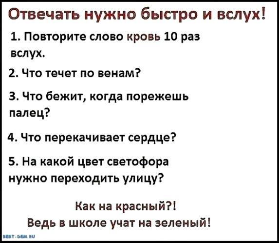 Анекдот Тест