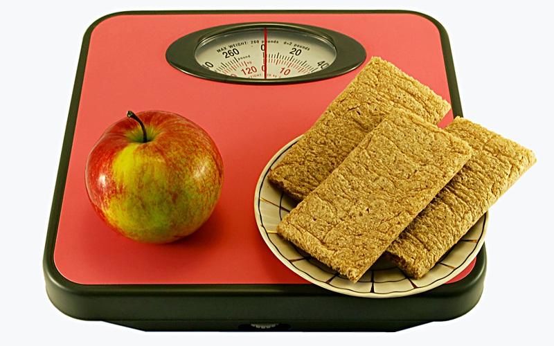 Обзор популярных диет