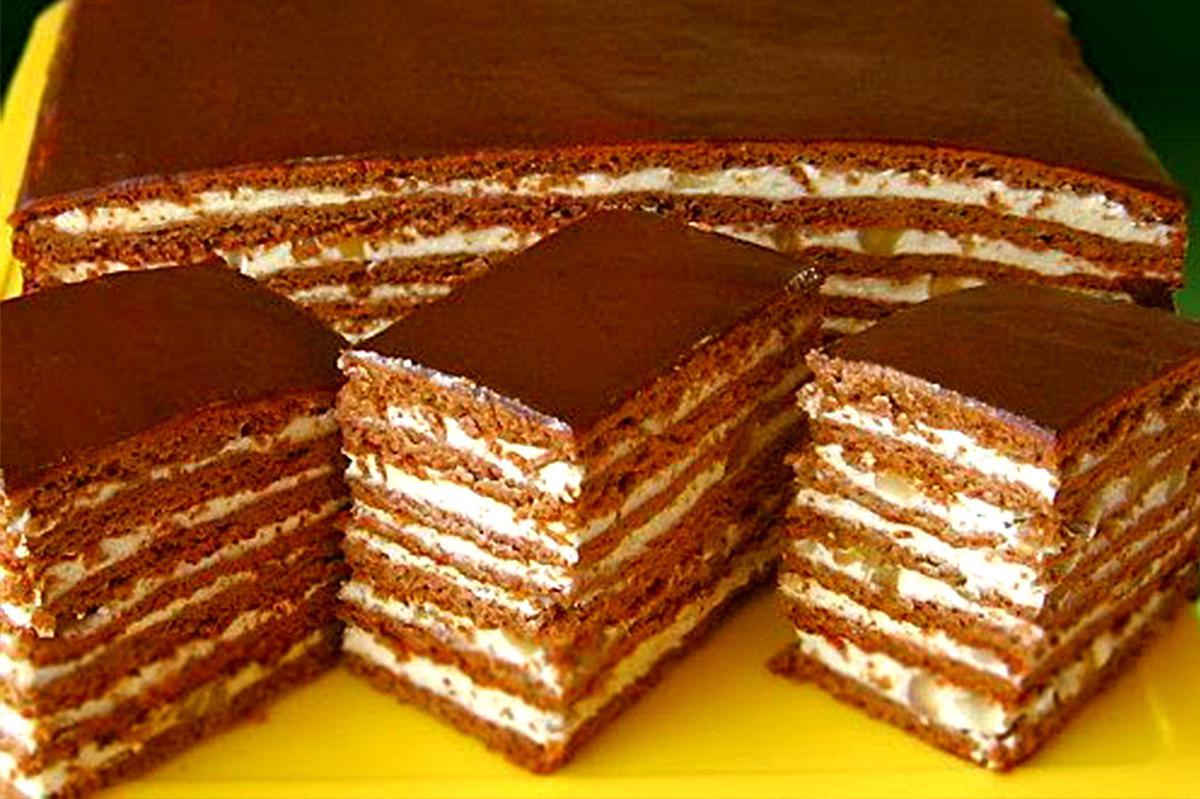 торты рецепты с фото медовик шоколадный