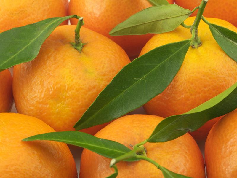 аллергия после мандаринов