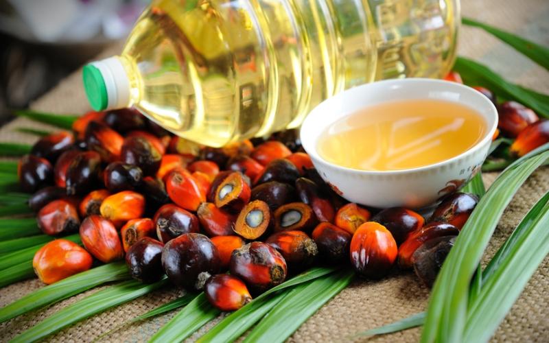 Россия снизила ввоз пальмового масла на 5,6%, до 621 тыс тонн