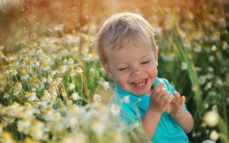 аромат как вырастить ребенка оптимистом запахи всегда
