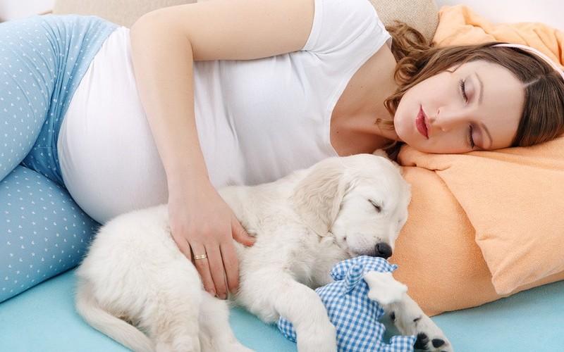 Почему беременная может храпеть